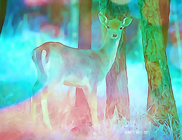 image of deer in woods