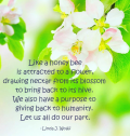 flower image of poetry