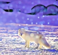 image of arctic fox haiku
