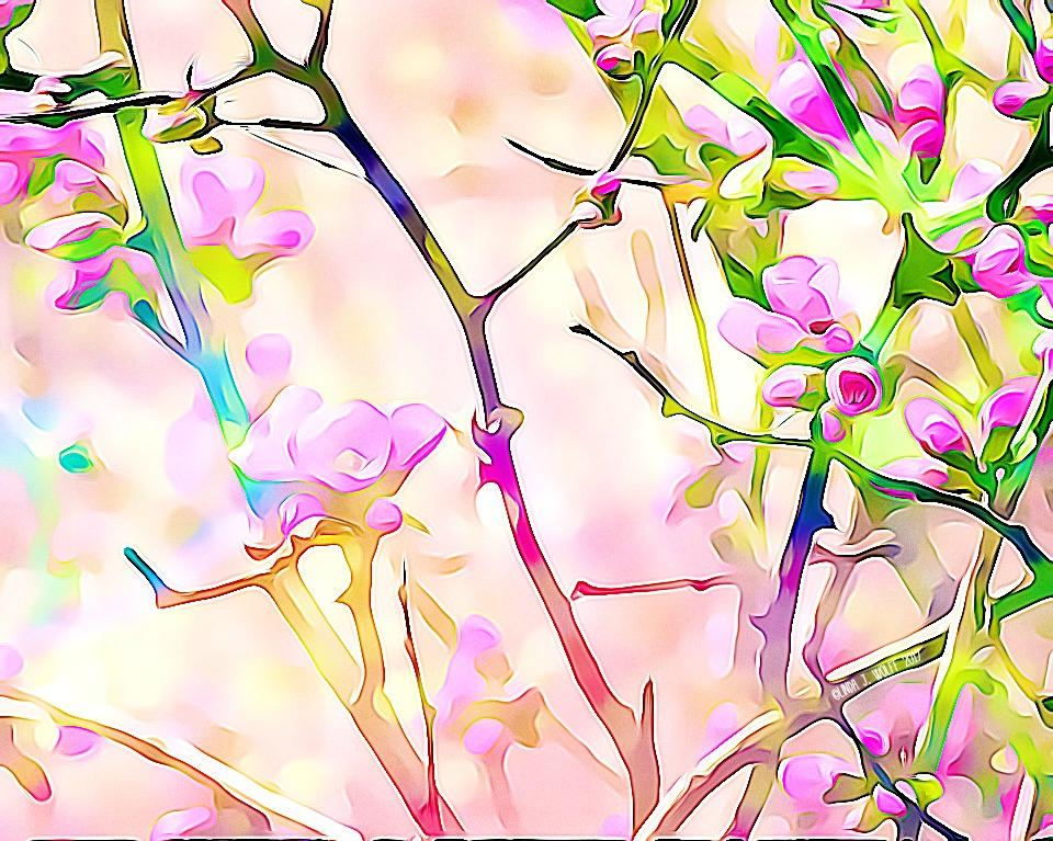 image of flowering buds