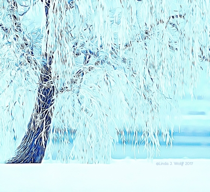 image of ice crystals on willow tree