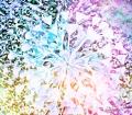 image of big blossom.