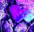 image of heart-shaped stone