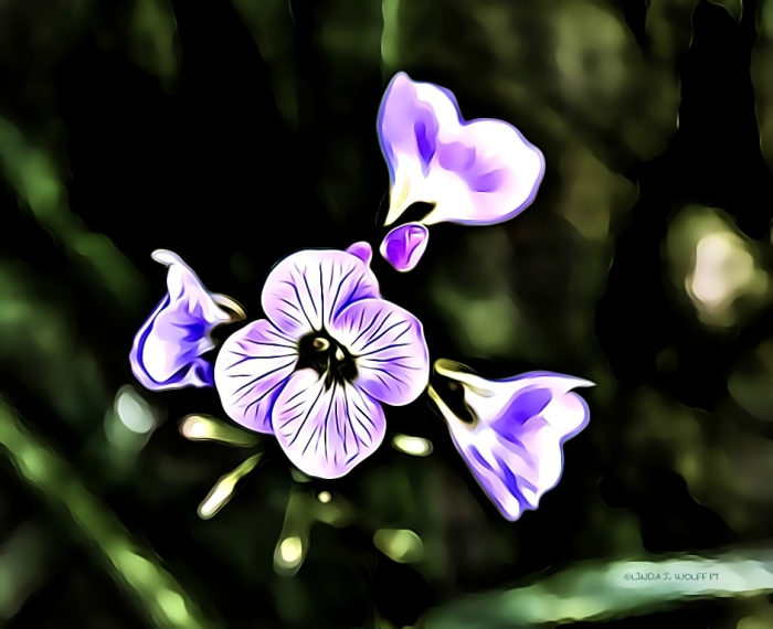 image of flower standing out in the darkness