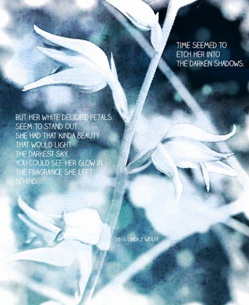 white delicate petals