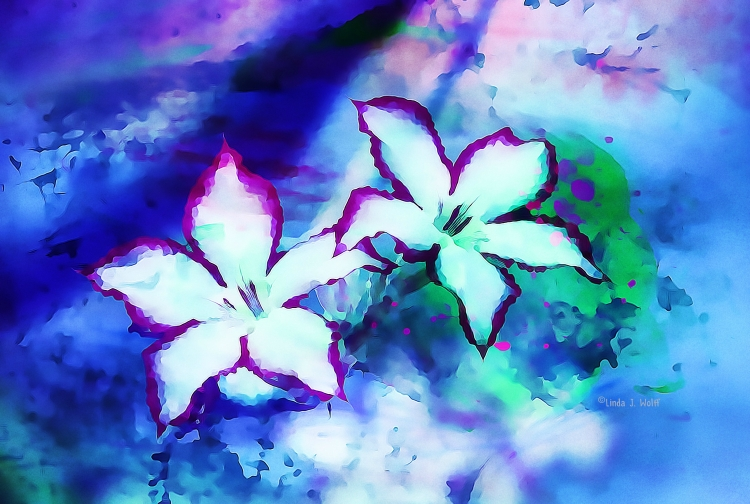 image of two flowers longing together
