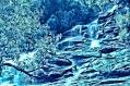 IMAGE OF WATERY HAIKU