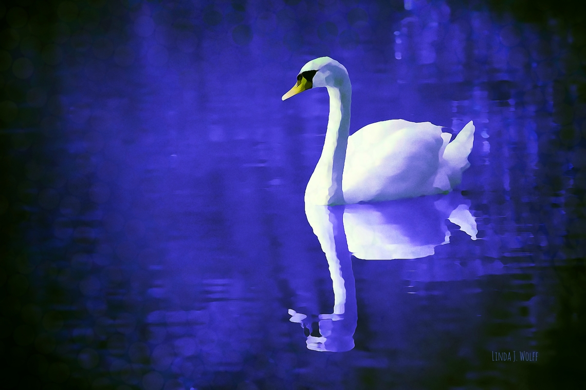 "Image of free verse poetry, ""Smiling Origami Swan""."