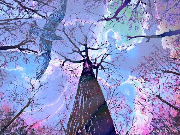 """Image of urban ekphrasis poem, """"Bird Under Canopy."""""""