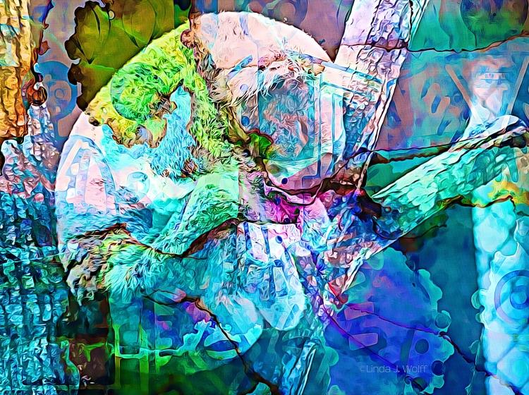 "Image of Ekphrastic Poem, ""Seattle's Woodland Park Zoo Koala Bear."""