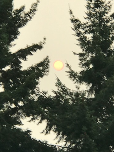Look at the Ring around the sun!